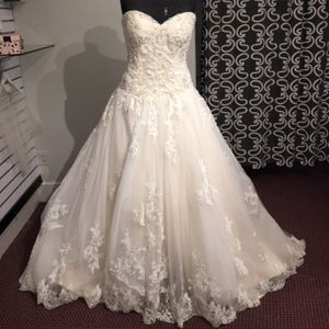 Size 12 / Champagne & Ivory lace Bridal gown